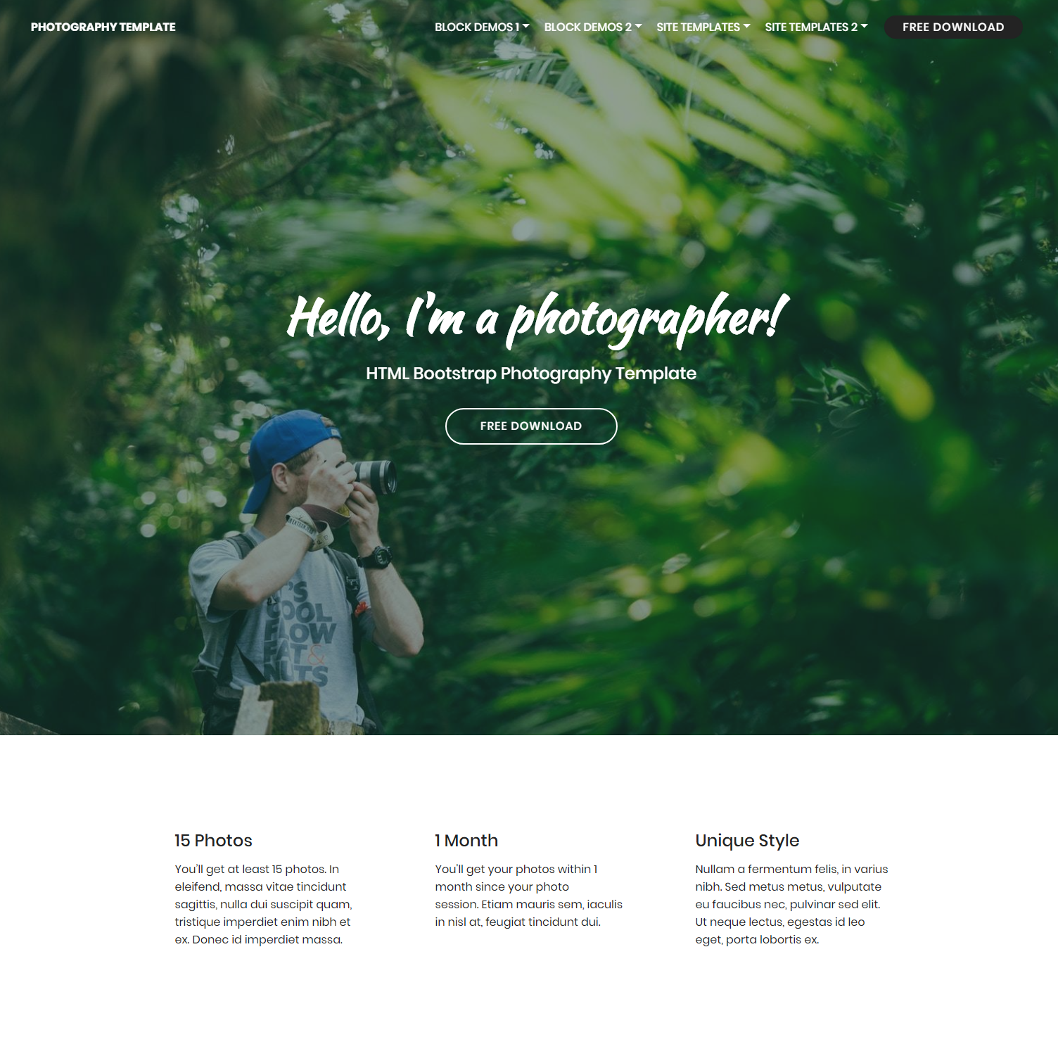 Responsive Bootstrap Photography Themes
