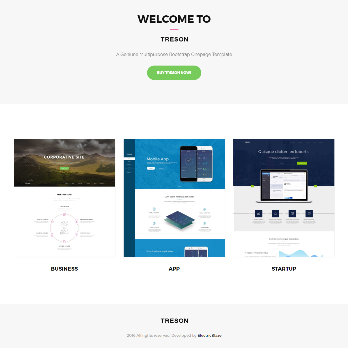 CSS3 Bootstrap Treson Templates