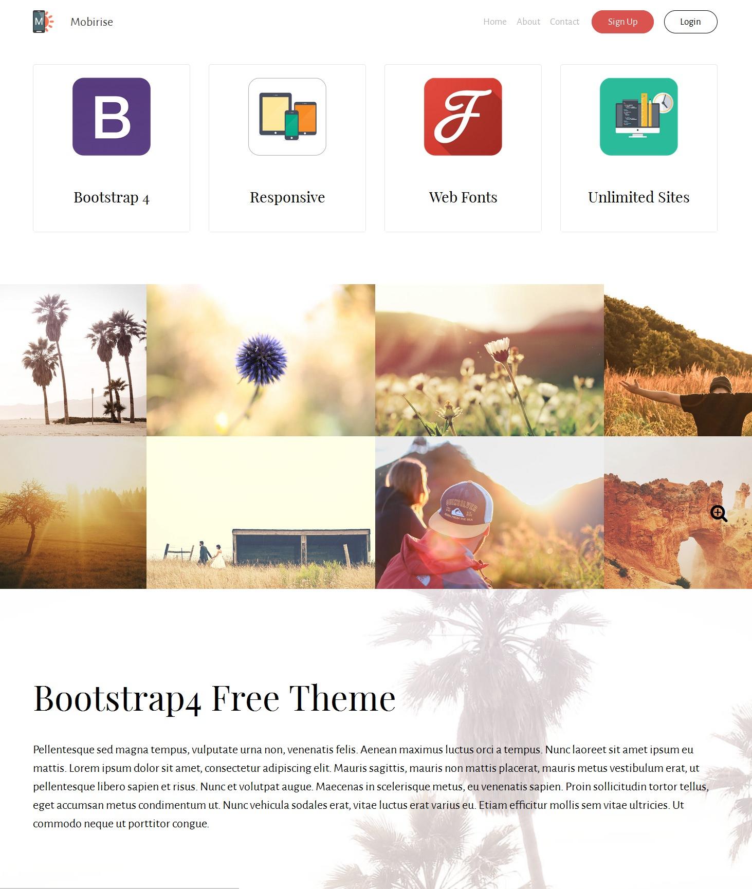 Responsive Bootstrap Basic Theme